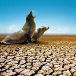 8 iniciativas para acabar com a falta de água no mundo